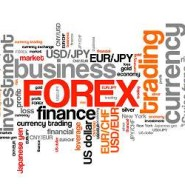 Forex Social Party