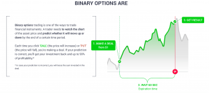 What Does Binary Options Mean?